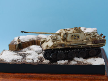 Panther_G_Late_Winter_Camo_2011_05_21_003.jpg