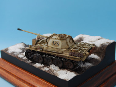 Panther_G_Late_Winter_Camo_2011_05_21_006.jpg